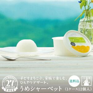 【梅干ラボ】うめシャーベット 80ml×12個アイス シャーベット 梅 おすすめ 人気 ご当地 お取り寄せ