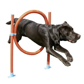 【Rosewood】犬用 トレーニング器具 ドッグ・アジリティ 犬の運動 イギリス・ローズウッド社製 (フープ)