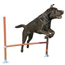 【Rosewood】犬用 トレーニング器具 ドッグ・アジリティ 犬の運動 イギリス・ローズウッド社製 (ハードル)