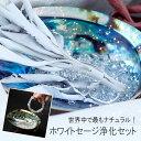 【送料無料】 天然石や空間を浄化 ホワイトセージ浄化セット お得な5点セット(ホワイトセージ・アバロンシェル・水晶さざれ・ローズウッド台座・収納ケース) 石の蔵