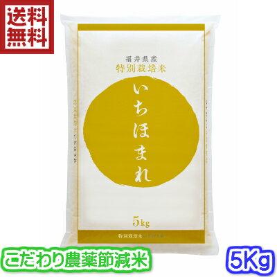 【本州は送料無料・特別栽培米】30年産 福井県 いちほまれ 5キロ入り