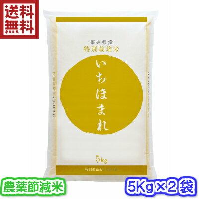 【本州は送料無料・特別栽培米】30年産 福井県 いちほまれ 10Kg(5キロ×2袋)