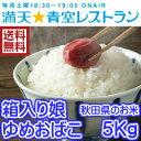 【TVで紹介されました】29年産 秋田県のお米 箱入り娘ゆめおばこ 5キロ入り *本州以外は別途送料加算