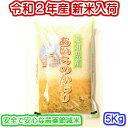 【農薬節減米】令和2年産新米入荷 愛知県産プレミアムあいちのかおり 5キロ入り