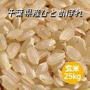 米 令和2年産 ひとめぼれ 玄米 25kg 本州四国 送料無料 綺麗仕上 精米無料 小分け可 30kg ⇒25kg へ変更