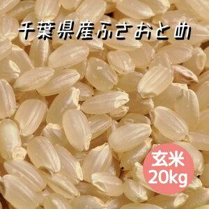 米 令和2年産 ふさおとめ 玄米 20kg 本州四国 送料無料 綺麗仕上 精米無料 紙袋