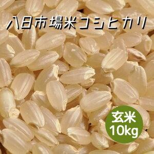 米 令和2年産 八日市場米 コシヒカリ 玄米 10kg 本州四国 送料無料 綺麗仕上 精米無料 紙袋