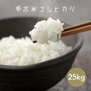 米 令和2年産 多古米 コシヒカリ 白米 25kg 本州四国 送料無料 30kg ⇒25kg へ変更