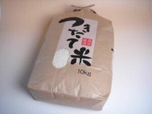 米 もち米 白米 10kg 本州四国 送料無料