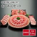 都城産豚 高城の里 わくわく3.6kg セット 豚肉 詰め合わせ 宮崎県産 国産 ロース とんかつ バラ 焼肉 焼肉用 肩ロース…