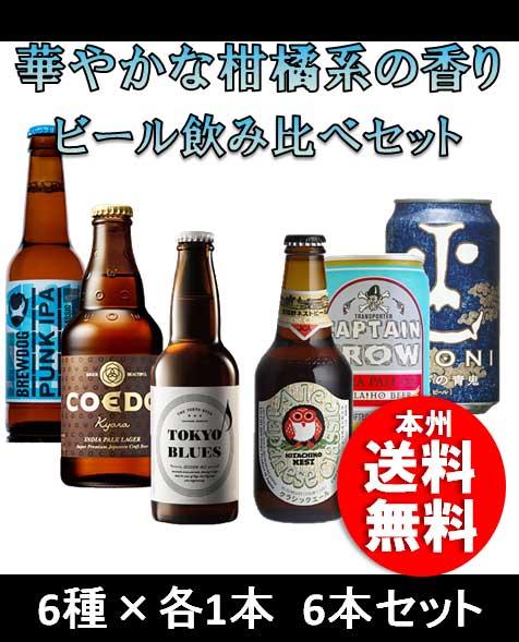 お中元 御中元 ギフト クラフトビール 柑橘系の香り エールビール6本飲み比べセット