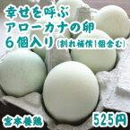 産みたての美味しい卵を皆様へ。