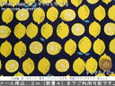 『Fresh lemon《フレッシュレモン》』コットン100%シーチングプリント●素材コットン100% ●生地幅:約108cm女の子/男の子/キッズ/フルーツ/生地/ハンドメイド/手作り/入園/入学/