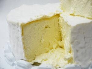 白カビチーズ ブリヤ サヴァラン アフィネ フランス産 500g