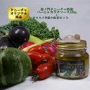 虎ノ門タニーチャ特製バーニャカウダーソース 198gとオススメ季節野菜セット