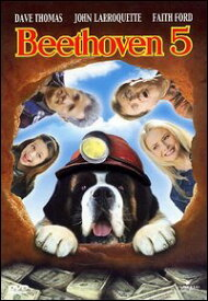ベートペン5 Beethoven 5映画DVDでイタリア語の学習