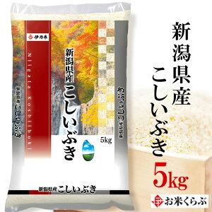 精米 米 5kg 令和元年産 伊丹米 新潟県産こしいぶき 5kg 白米 熨斗承ります