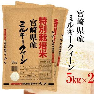 精米 令和2年産 特別栽培米 伊丹米 宮崎県産ミルキークイーン 10kg(5kg×2) 白米 熨斗承ります
