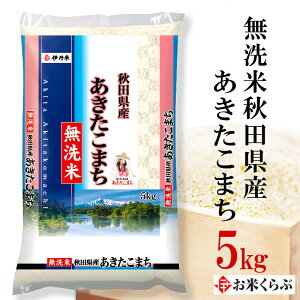 5kg 令和元年産 伊丹米 無洗米秋田県産あきたこまち 5kg 白米 熨斗承ります