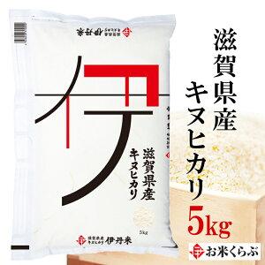 米 5kg 令和元年産 伊丹米 滋賀県産キヌヒカリ 白米 熨斗承ります
