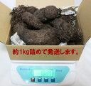【送料無料】「紫山いも(大薯)」約1kg/アントシアニンたっぷり!芋の中まで濃い紫の希少品種【即出荷/送料無料】
