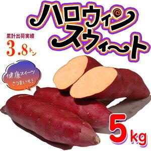 【送料無料】ハロウィンスイート 5kg【特Aクラス 希少 さつまいも 2020 秋 新芋 土付き お買い得】はろうぃんすいーと 健康 焼き芋 やきいも 焼芋 サツマイモ さつま芋 薩摩芋 熟成 特選 取り