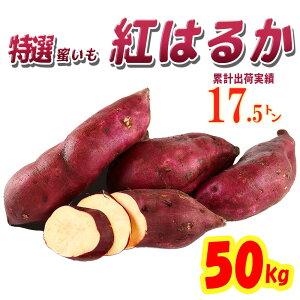 【送料無料】茨城県産 さつまいも 紅はるか 50kg【特Aクラス さつまいも MLサイズ 2020 秋 新芋 土付き お買い得】べにはるか 焼き芋 やきいも 焼芋 サツマイモ さつま芋 プレゼント ギフト 贈