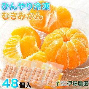 プレゼント 内祝 アイス 果物 みかん 冷凍 有田みかん 48個入 無添加 美味しい おいしい シャーベット ソルベ