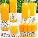 みかんジュース ストレート 750ml 12本 和歌山 国産 無添加 果汁100% 飲み比べ みかんしぼり 伊藤農園 ジュース 大瓶 …