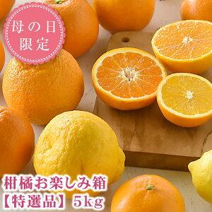 父の日 ギフト プレゼント 柑橘 詰め合わせ 5kg みかん 八朔 甘夏 オレンジ フルーツ 果物 花付き 送料無料 和歌山 贈り物 あす楽