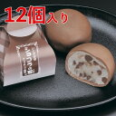 【化粧箱】 ショコラの宴(ココアブラウン) 12個入り/ 個梱包 包装 甘さ控えめ チョコスイーツ ギフト プレゼント プチギフト お返し…