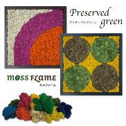 モスフレームトリプル/モステラモスTERRAMOSSインテリアグリーングリーンパネルウォールフレームウォールグリーン壁掛け枯れない苔苔プリザーブドグリーンプリザーブドフラワー壁面緑化パネル空気清浄
