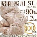 Syonishi_n