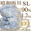 Syounishi010
