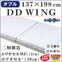 Dd_wing_d01