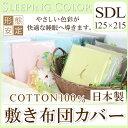 Spc_siki_sd01