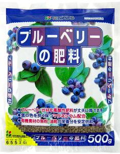 【肥料】花ごころ ブルーベリーの肥料500g