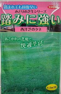 【種子】西洋芝踏みに強い西洋芝(芝草)サカタのタネ