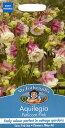 【輸入種子】Mr.Fothergill's SeedsAquilegia Peticort Pinkアクレイジア(オダマキ)・ペチコート・ピンクジョンソンズシー...