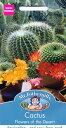 【輸入種子】Mr.Fothergill's SeedsCactus Flowers of the Desertカクタス・フラワーズ・オブ・ザ・デザートミスター…