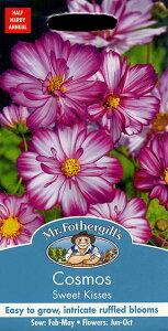 【輸入種子】Mr.Fothergill's Seeds Cosmos Sweet Kisses コスモス スイート・キッスイズ ミスター・フォザーギルズシード