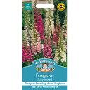 【輸入種子】Mr.Fothergill's SeedsWildlife GardenFoxglove Digitalis Foxy Mixedワイルドライフ・ガーデンフォック…
