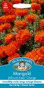 【輸入種子】Mr.Fothergill's SeedsMarigold (African) Kees Orangeマリーゴールド(アフリカン)・キーズ・オレンジ…