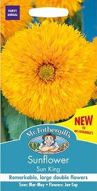 【輸入種子】Mr.Fothergill's SeedsSunflower Sun Kingサンフラワー サン・キングミスター・フォザーギルズシード
