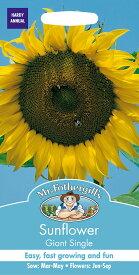 【輸入種子】Mr.Fothergill's SeedsSunflower Giant Singleサンフラワー(ひまわり) ジャイアント・シングルミスター・フォザーギルズシード