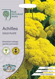 【輸入種子】Mr.Fothergill's Seeds Royal Horticultural Society Achillea GOLD PLATERHSアキレア ゴールド・プレートミスター・フォザーギルズシード