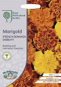 【輸入種子】Mr.Fothergill's SeedsRoyal Horticultural Society Marigold(FRENCH) BONANZA ...