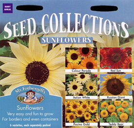 【輸入種子】Mr.Fothergill's SeedsSeed Collections Sunflowersシード・コレクションズ・サンフラワーズ(ひまわり)ミスター・フォザーギルズシード