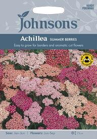 【輸入種子】Johnsons SeedsAchillea Summer Berries Mixedアキレア サマー・ベリーズ・ミックスジョンソンズシード