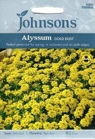 【輸入種子】Johnsons Seeds Alyssum saxatile Gold Dustアリッサム ゴールド・ダストジョンソンズシード